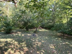 2,100 Sq. Ft. Ranch Style Home & 2 1/2 Ac. Wooded Bluff Lot With N. Garth Ave. Frontage, Offered Separately at Absolute Auction, 105 W. Thurman St., Columbia, MO featured photo 5