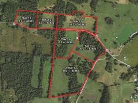 106+ Acre Magnolia KY Absolute Online Only Auction featured photo 3