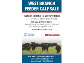 77th Annual West Branch Feeder Calf Sale featured photo 2