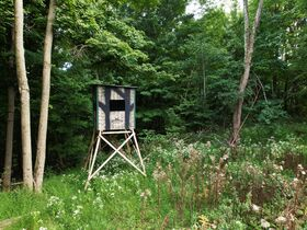Trophy Whitetail Property that is Set Up and Ready To Go. featured photo 3