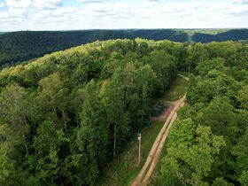 Trophy Whitetail Property that is Set Up and Ready To Go. featured photo 9