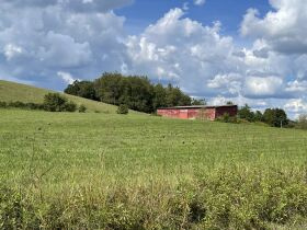 95.92 Acres with House, Spring, Barn - Providence Rd, Limestone, TN featured photo 7