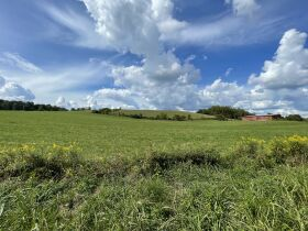95.92 Acres with House, Spring, Barn - Providence Rd, Limestone, TN featured photo 4