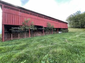 95.92 Acres with House, Spring, Barn - Providence Rd, Limestone, TN featured photo 9