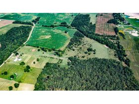 75 +/- ACRES IN ALVATON; MARKETABLE TIMBER; POND & BARN; FUTURE HOME SITE featured photo 2