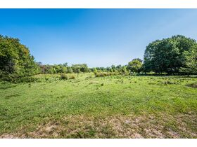 75 +/- ACRES IN ALVATON; MARKETABLE TIMBER; POND & BARN; FUTURE HOME SITE featured photo 3