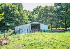 75 +/- ACRES IN ALVATON; MARKETABLE TIMBER; POND & BARN; FUTURE HOME SITE featured photo 4