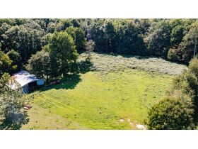 75 +/- ACRES IN ALVATON; MARKETABLE TIMBER; POND & BARN; FUTURE HOME SITE featured photo 5