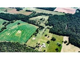 75 +/- ACRES IN ALVATON; MARKETABLE TIMBER; POND & BARN; FUTURE HOME SITE featured photo 7