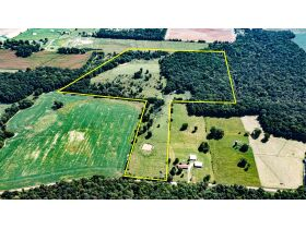 75 +/- ACRES IN ALVATON; MARKETABLE TIMBER; POND & BARN; FUTURE HOME SITE featured photo 1