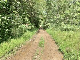91 Acre Harrison County Land featured photo 2