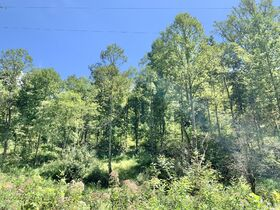 91 Acre Harrison County Land featured photo 3