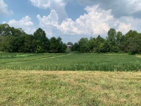 98.5+/- Acre Land Auction - Warrick Co., IN featured photo 5
