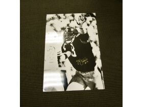 *ENDED* Official Steelers/Heinz Field Memorabilia Auction - Pittsburgh, PA featured photo 3
