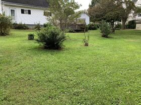 Tyler County 3 Bedroom Home featured photo 6