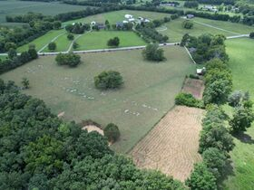 Nice 3 BR, 2 BA Brick Home on 64+/- Acres - Offered in 5 Tracts with Barns, Ponds, Pasture and Hardwood Trees! featured photo 5