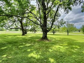 Nice 3 BR, 2 BA Brick Home on 64+/- Acres - Offered in 5 Tracts with Barns, Ponds, Pasture and Hardwood Trees! featured photo 4