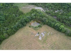 Nice 3 BR, 2 BA Brick Home on 64+/- Acres - Offered in 5 Tracts with Barns, Ponds, Pasture and Hardwood Trees! featured photo 12