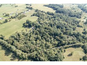 CALVIN PATTERSON ESTATE REAL ESTATE AUCTION HOUSE WITH 40x80 METAL POLE BARN AND 24 ACRES LAGRANGE KY featured photo 7