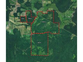 Online Auction    2,500 ± acres in Mississippi and Alabama featured photo 2