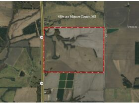 Online Auction    2,500 ± acres in Mississippi and Alabama featured photo 3
