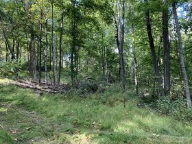 Coshocton County Trophy Hunting Property (Walhonding Area) featured photo 4