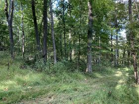Coshocton County Trophy Hunting Property (Walhonding Area) featured photo 5