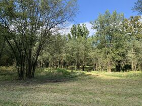 Coshocton County Trophy Hunting Property (Walhonding Area) featured photo 6