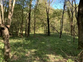 Coshocton County Trophy Hunting Property (Walhonding Area) featured photo 8
