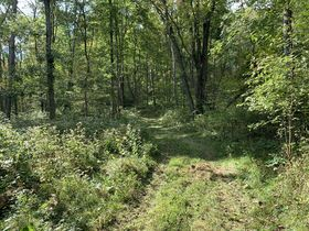 Coshocton County Trophy Hunting Property (Walhonding Area) featured photo 9