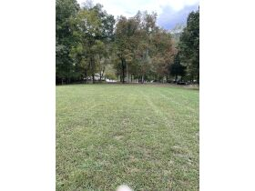 Online Only Auction -  Prime 1.27 Acre Lake Lot with Dock featured photo 10