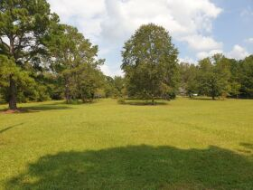 Selling Absolute! - The Johnson Estate - House & 14.9 +/-Acres in Lee County, Alabama featured photo 4