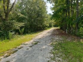 Selling Absolute! - The Johnson Estate - House & 14.9 +/-Acres in Lee County, Alabama featured photo 5