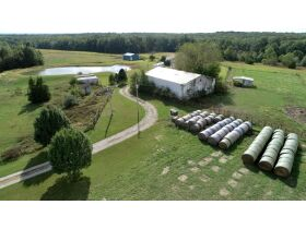Court Ordered Auction 75 +/- Acres, Home & Outbuildings, 18479 Hwy. RA, Martinsburg, MO featured photo 9