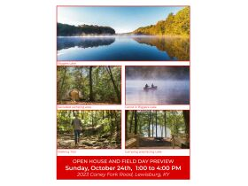 HIDDEN LAKE FARMS - 380 +/- ACRES SELLING IN 15 TRACTS featured photo 3
