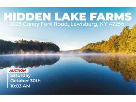 HIDDEN LAKE FARMS - 380 +/- ACRES SELLING IN 15 TRACTS featured photo 4