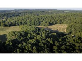 HIDDEN LAKE FARMS - 380 +/- ACRES SELLING IN 15 TRACTS featured photo 5