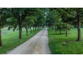 HIDDEN LAKE FARMS - 380 +/- ACRES SELLING IN 15 TRACTS featured photo 8