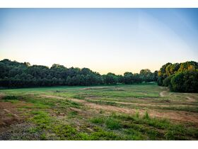 HIDDEN LAKE FARMS - 380 +/- ACRES SELLING IN 15 TRACTS featured photo 10
