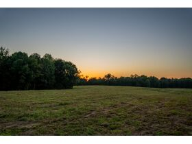 HIDDEN LAKE FARMS - 380 +/- ACRES SELLING IN 15 TRACTS featured photo 11