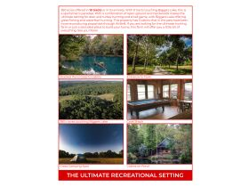 HIDDEN LAKE FARMS - 380 +/- ACRES SELLING IN 15 TRACTS featured photo 2